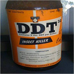 DDTMW2