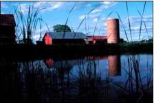 farm with a pond