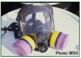eye protection with respirator