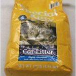 Kitty Litter