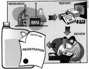 pesticide registration process diagram