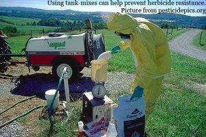 mixing pesticides