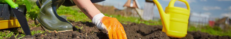 Integrated Pesticide Management (IPM)