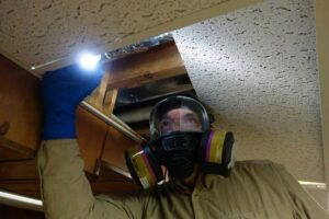 Man with respirator looking into attic